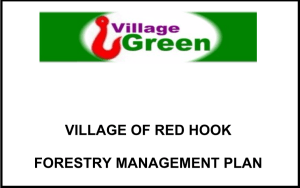Red Hook Village cover