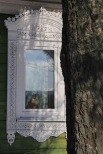 Gato en la ventana.