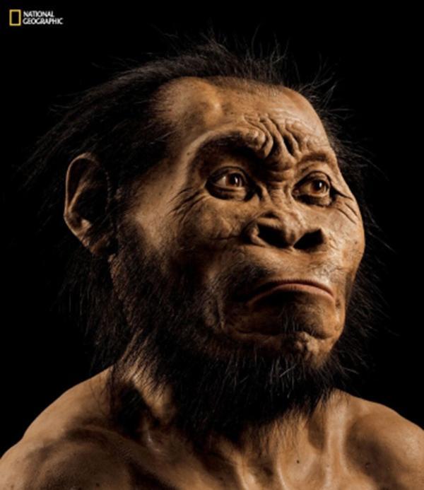 Homo naledi is a new species of human relative.