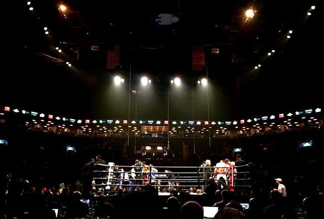 Errol Spence Jr. defeats Chris Algieri in five rounds at the Barclays Center on April 16.