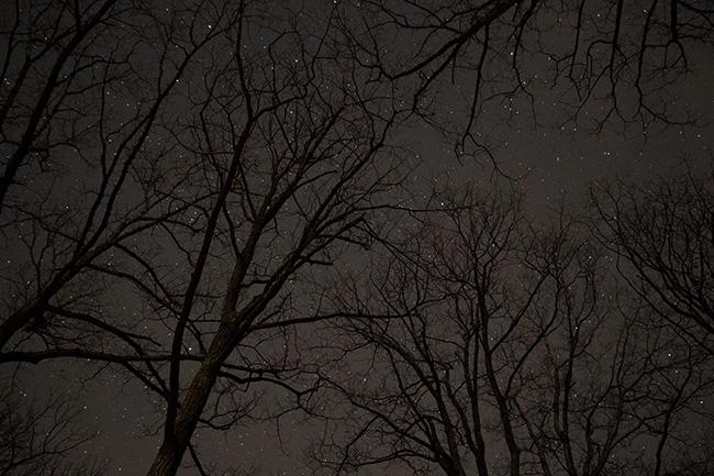 Though it can be hard to get past the light pollution, it is possible to see the stars while staying in the city.