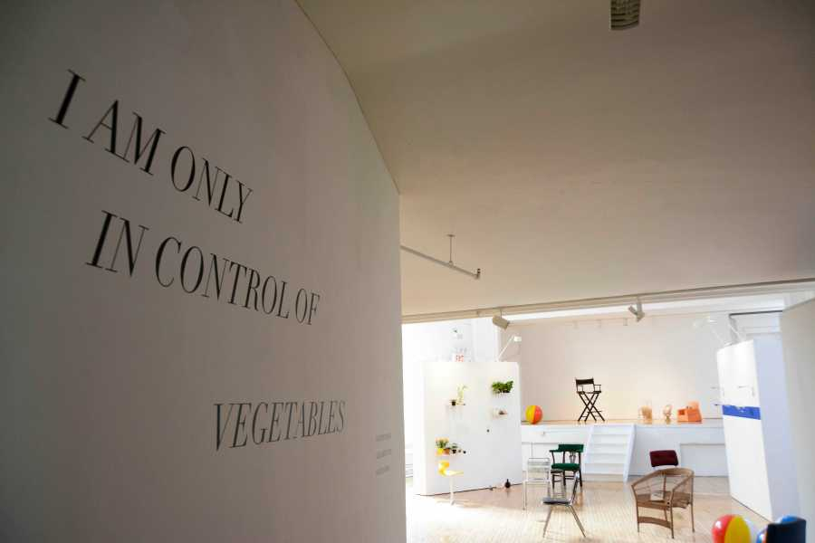 """""""I am only in control of vegetables"""" is a Steinhardt student art gallery on display through September 24."""