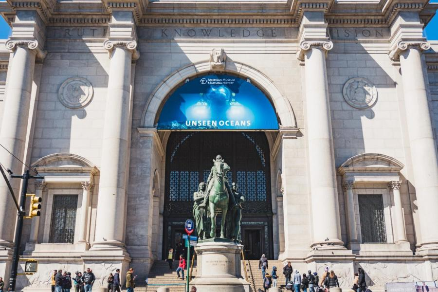 The American Museum of Natural History is one of the largest museums in the world.