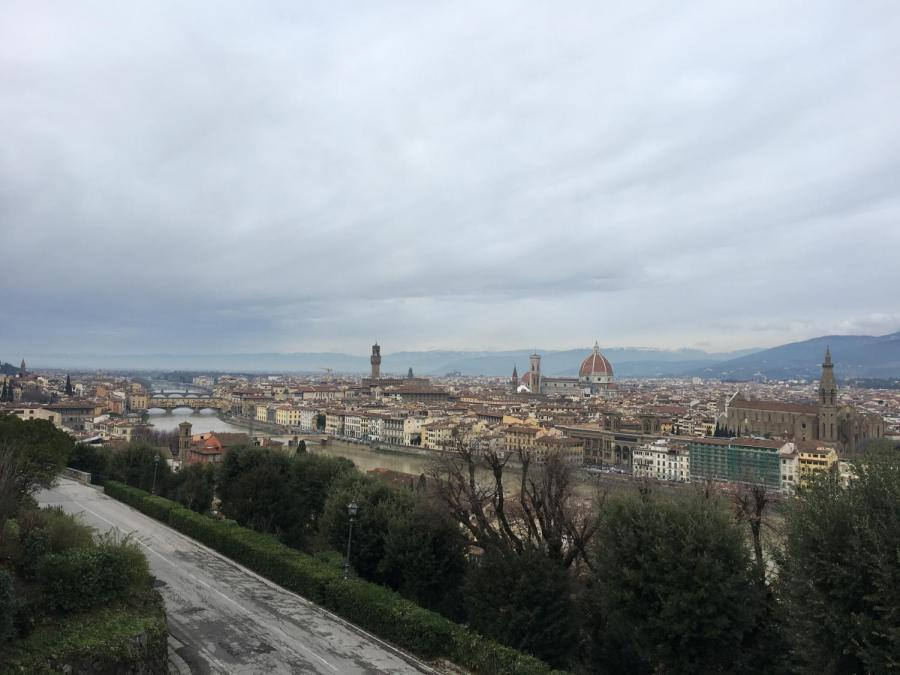 The Florence skyline.