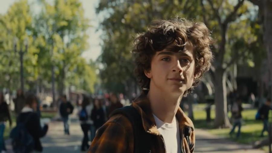 Timothee Chalamet in Beautiful Boy. (via youtube.com)