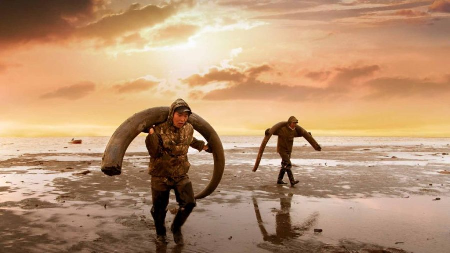 Yakuts carrying wooly mammoth tusks on the New Siberian Islands. Courtesy of KimStim.
