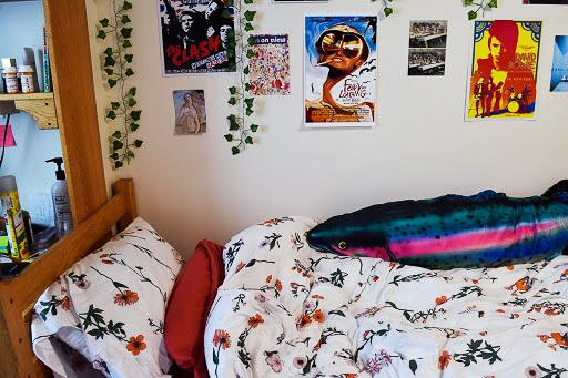 Sophia Ettin's Palladium room displays vibrant posters from her London study abroad. She also keeps a Rainbow trout pillow that was given by a friend. (Photo by Sabrina Choudhary)