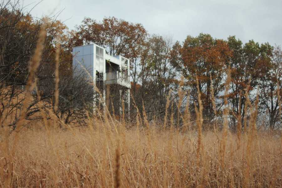 A reflective watchtower situated behind a field of tall grass.