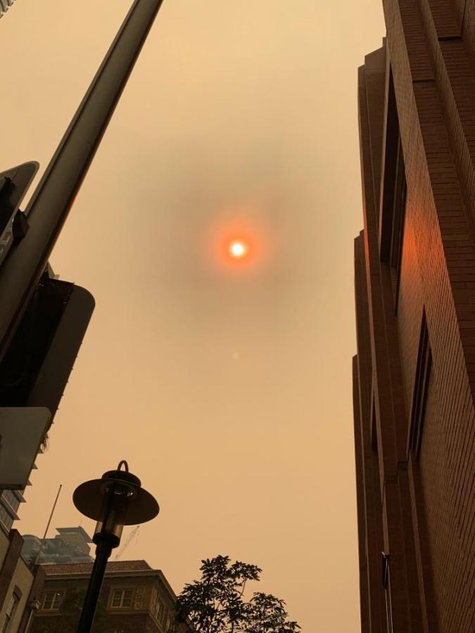 NYU Sydney responds to the Australian bushfires. (Photo by Jess Chapel)