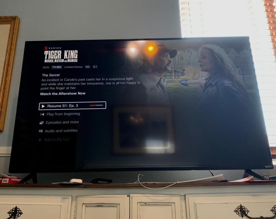 A student streams Tiger King while in quarantine. Netflix's Tiger King has become a sensation for the streaming platform. (Staff Photo by Jake Capriotti)