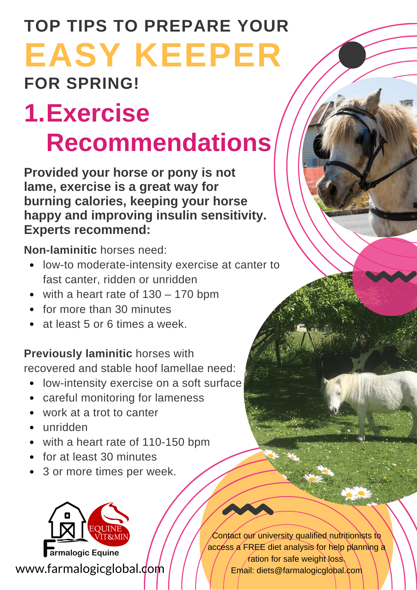 Exercise Recommendations