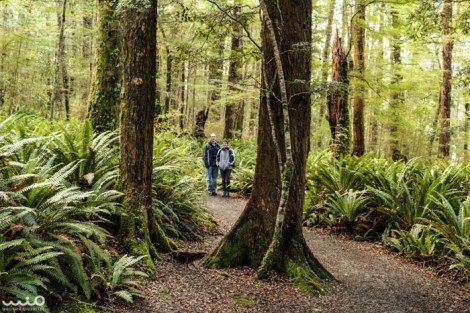 Philip and Jessica between two trees on the Kepler Track.