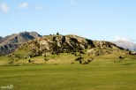 "William called this ""One Tree Hill"" for the one prominent pine tree that stood out on this somewhat Edoras-like hill."