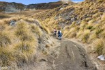 After a while, the track got a bit steeper, muddier, and the vegetation turned to the classic yellow Otago tussock.