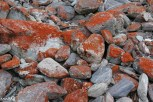 Lots of red rocks in Arthur's Pass National Park