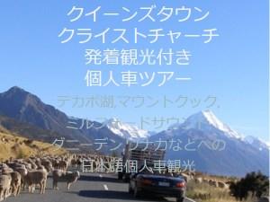 NZブリーズ観光つき個人車移動ツアー