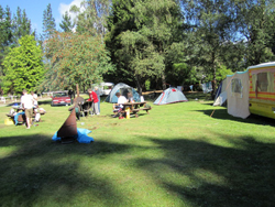 Herbert Forest Camping Ground
