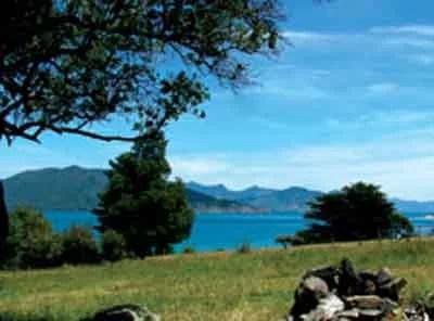 Waimaru