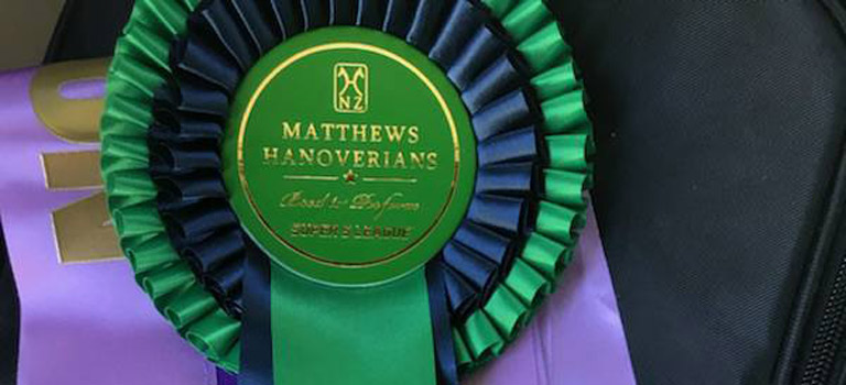 Southern Hawkes Bay Dressage Championship Show 2017 Results