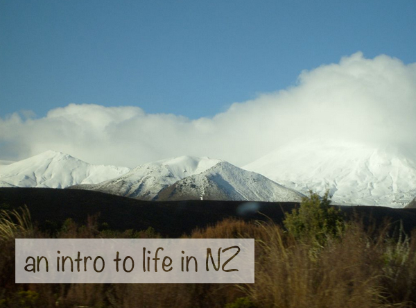 snow mountains north island - living in nz nzmuse