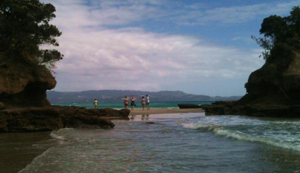 tawharanui beach marine reserve nz