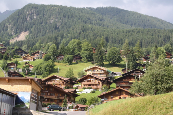 Houses on the hill, Grindelwald, Switzerland