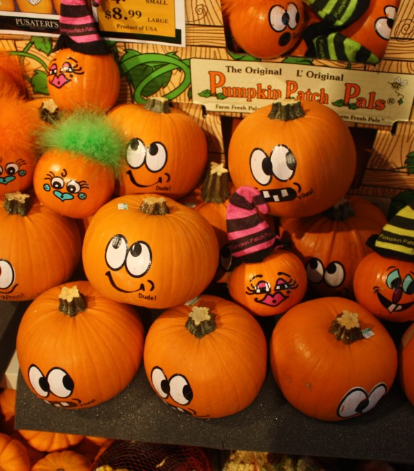 Cute pumpkin patch pals in Toronto