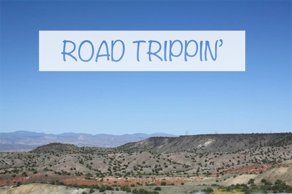 NZMUSE ROAD TRIPPIN USA