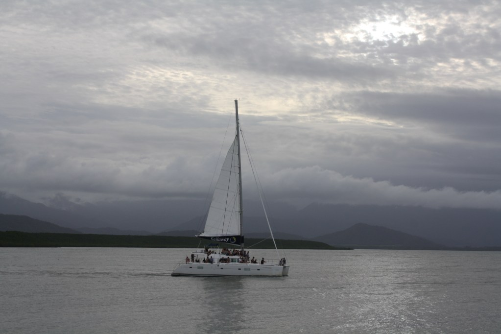 wags free wednesday sunset sail port douglas yacht club