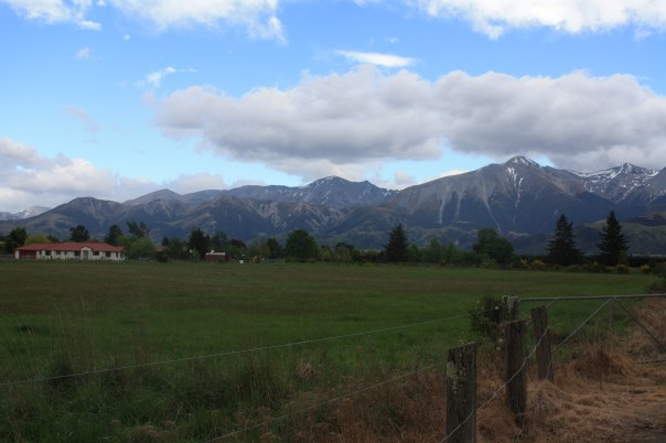 Scenery from the TranzAlpine train