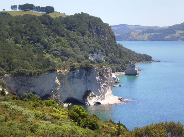 Cathedral Cove - a day trip to Coromandel from Auckland