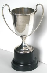 Travelling Federation Cup
