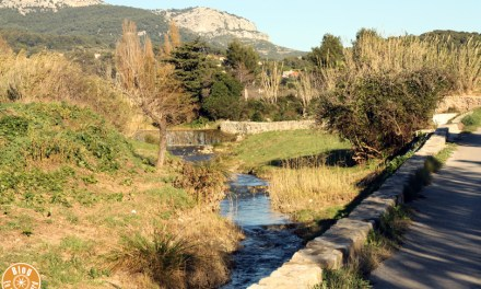 Promenade au fil de l'eau | Ollioules