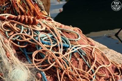 port sanary22