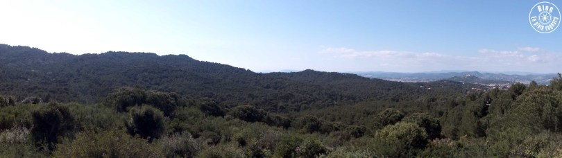 baou-rouge-cap-sicié-12