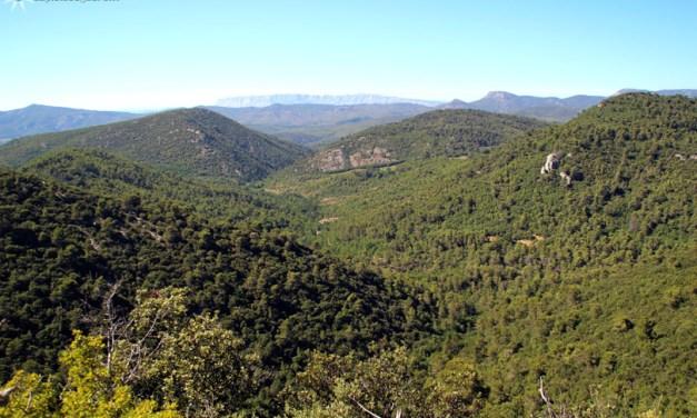 Pourquoi vous allez adorer la Provence Verte