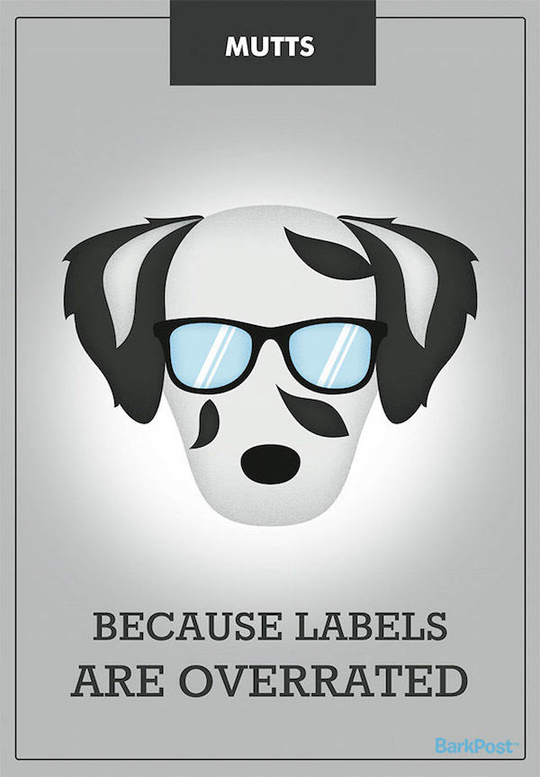12 Completely Accurate Dog Breed Slogans