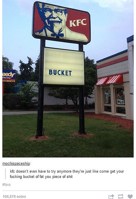 11 Tumblr Comments That Made The Photo Even Better