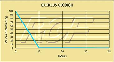 Bacillus-globigii