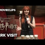 Wizarding World of Harry Potter at Universal Studios Hollywood Park Visit  (2016) HD