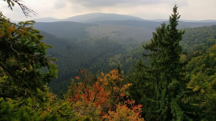 Harz hike
