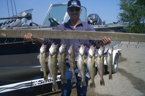 Good friend, Kenny G and I went scouting the waters around Sutton's Bay and brought in this nice limit of 'eyes