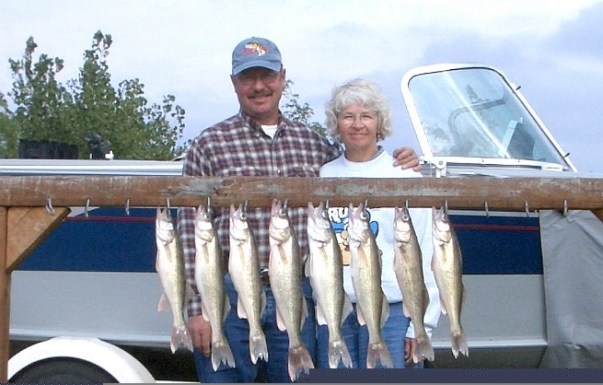 "Fishing the Fort George area, along the treeline, we found some great 14'15"" walleye"
