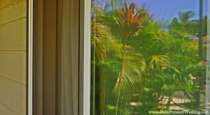 Oahu Window Cleaning
