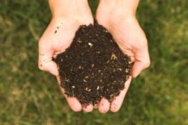 Soil Health is in Our Hands