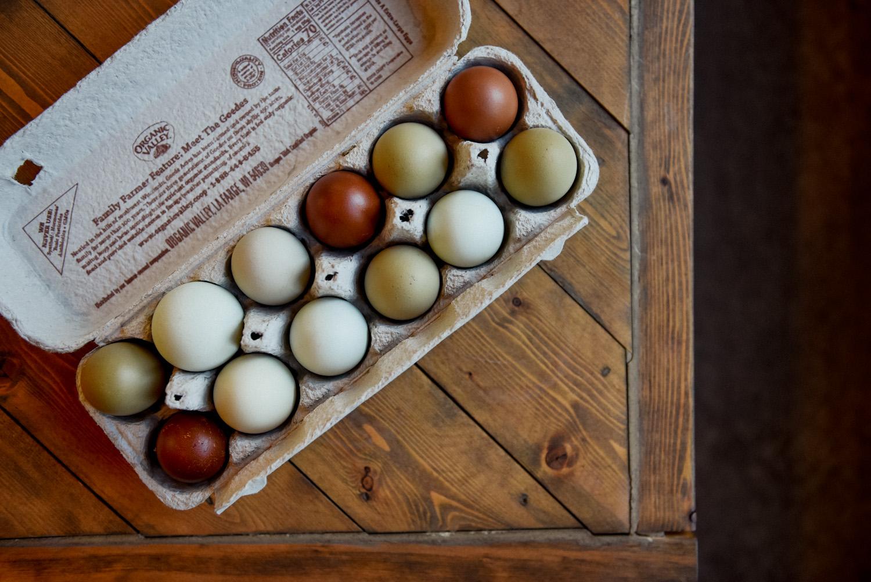 Beautiful 3 FRENCH BLACK COPPER MARAN Hatching Eggs Very Dark Chocolate Eggs