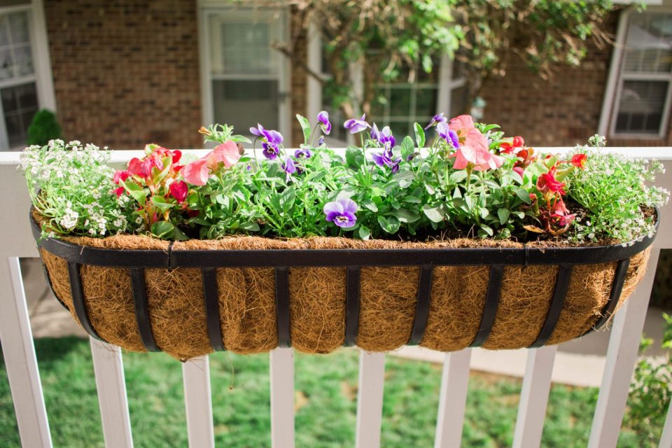 DIY Back Porch Garden that takes up little space but looks wonderful and adds so much life! Perfect for apartment, condo, and town home living! I love growing your own herbs!