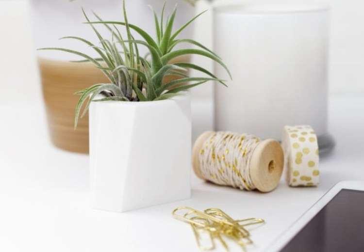 Shop Oak + Oats - Modern Mini planters for Air Plants and Mini Succulents