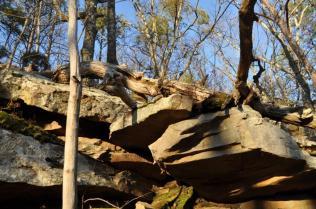 limestone outcropping