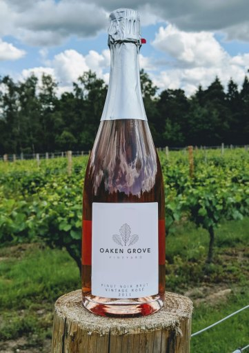 English Sparkling Pinot Noir Rose 2011 Vintage from Oaken Grove Vineyard